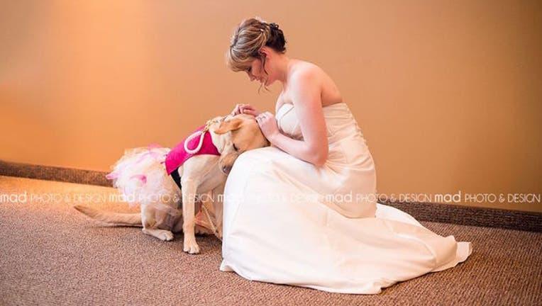 2267a953-bride-dog_1452961770513-404023.jpg