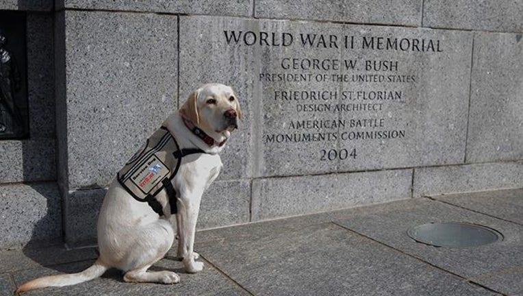 4920d82b-Sully WWII Memorial_1558980356431.jpg-408795.jpg