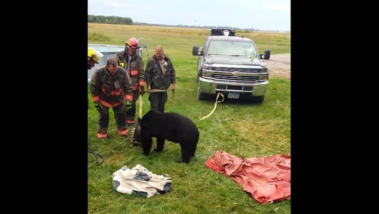 569dd9f2-bear with jug stuck_DNR_1536628842654.jpg.jpg