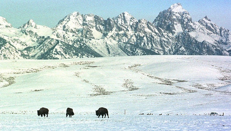 GETTY Grand Teton National Park_1523563692935.jpg-407693.jpg
