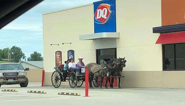 6c8d4579-dq-horse-and-buggy_1562540441344.jpg