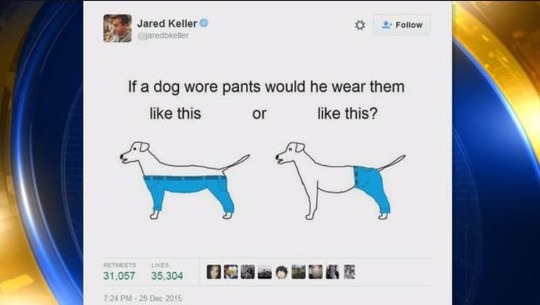 75d1f5b1-Dog_Pants_Debate-401720.jpg