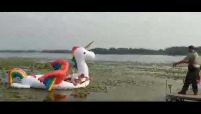 unicorn_1534033267864.JPG