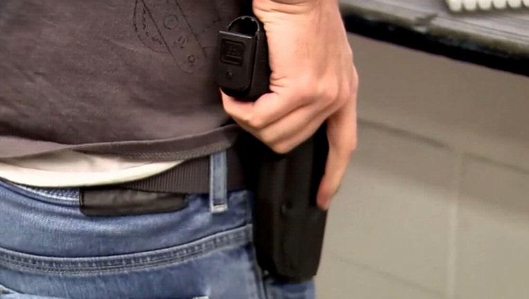 open carry concealed gun handgun-401385-401385