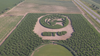 Minnesota Lynx get spotlight in state's largest corn maze