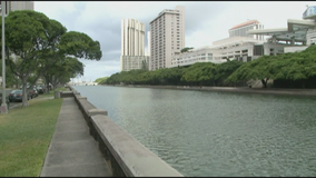 Body found in Honolulu canal identified as Minneapolis woman