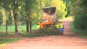 Clean up starts after storms cause damage in Minnetrista, Minnesota