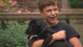 Gov. Walz fulfills campaign promise with son, adopts puppy
