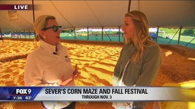 Sever's Fall Festival opens for its 23rd season