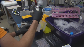 University of Minnesota professor developing potential HIV vaccine