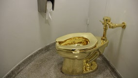 Solid gold toilet stolen from Winston Churchill's birthplace in England