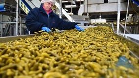 U of M study: Food industry vulnerable to 'devastating' cyberattacks