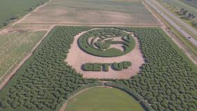 Minnesota Lynx get spotlight in state's largest corn maze