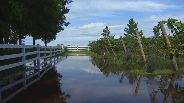 Wet weather causing problems for Minnesota farmers looking forward to fall