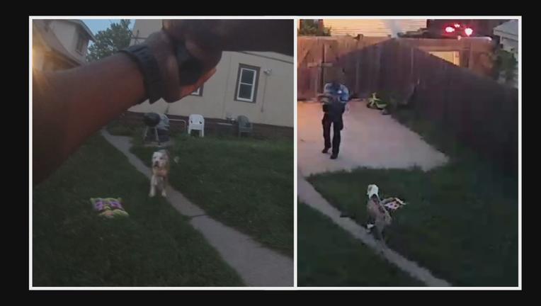 Police shoot dogs surveillance