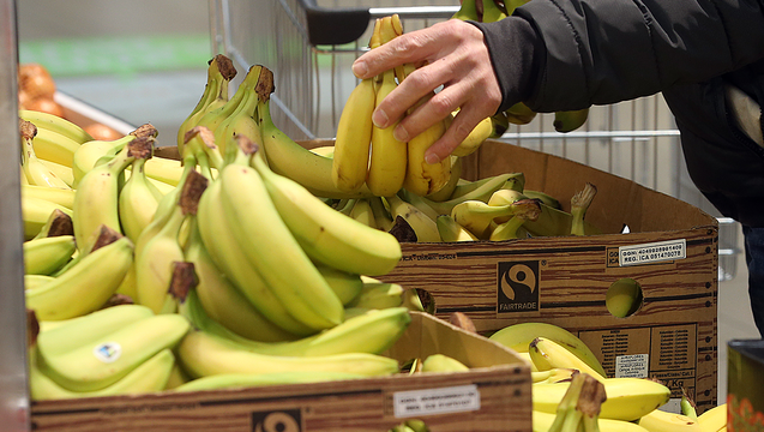 2449c3bf-GETTY_bananas_073019_1564497766862-402429.png