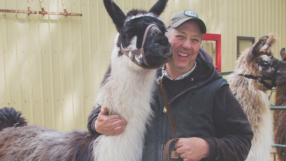 llamas and Rick Carlson