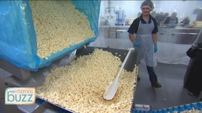 FOX 9's Shayne Wells checks out Ellsworth Cheese Curds behind the scenes
