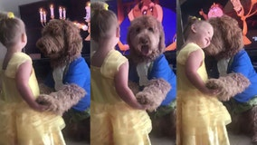 Toddler and good dog dance to 'Beauty and the Beast' in adorable viral video