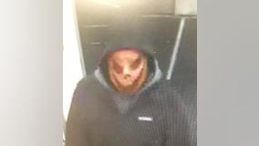 Eagan Police looking for suspect in 'Pumpkin Caper'