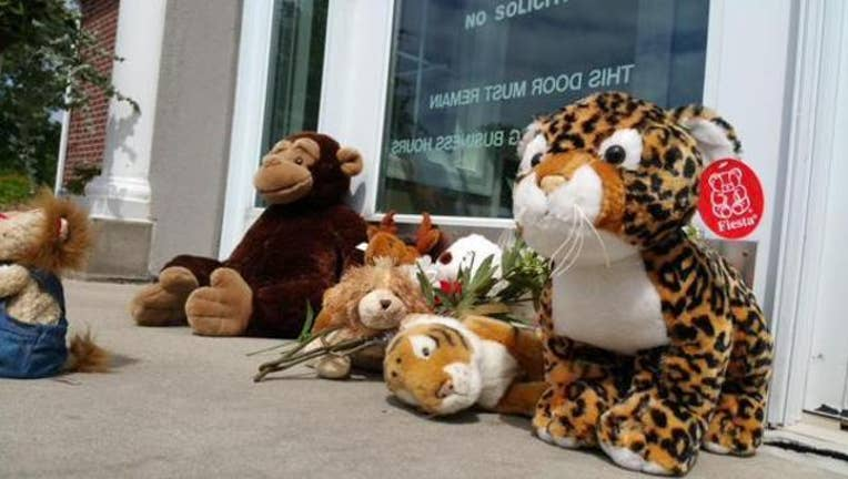 Protest at Dr. Walter Palmer's office