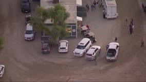 Horse dies after sustaining injury during Breeders' Cup at Santa Anita racetrack