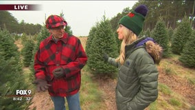 Christmas trees: Green isn't your only color option now!