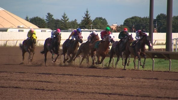 Speed: Canterbury Park race horses exposed to methamphetamine