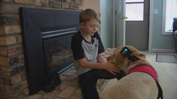 Minnesota organization places its 700th dog with local boy battling disorder