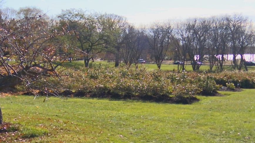 Minneapolis park board begs public to avoid group sports, maintain distancing