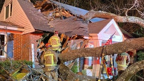 Elderly Atlanta woman killed after tree falls on house