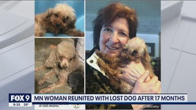 Minnesota woman reunited with missing dog after 17 months