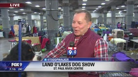 Land O'Lakes Dog Show in St. Paul, Minnesota