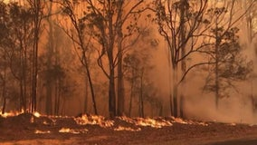 Group collecting funds to help Australia recovery as Minnesota firefighters join wildfire battle