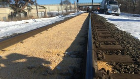 Photo of corn perfectly filling railroad tracks in Minnesota proves real
