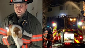 Crews rescue cats from house fire in Eagan, Minnesota