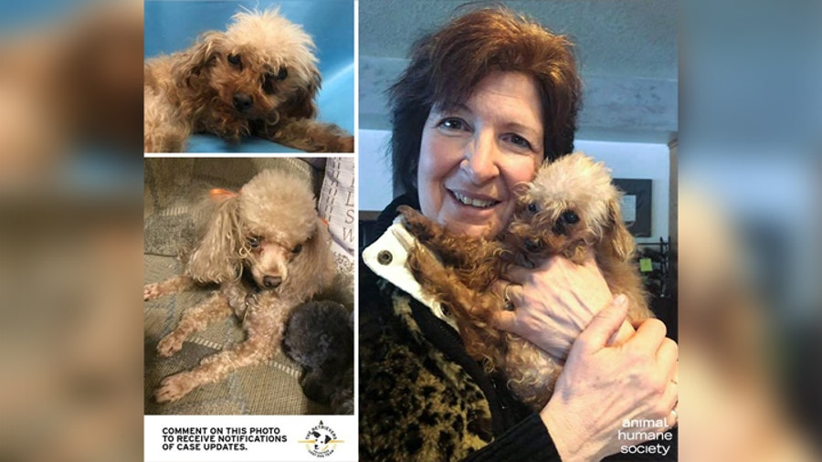 Minnesota woman reunited with dog that went missing for 17 months