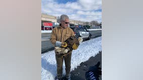 Runner helps rescue injured bald eagle in Brooklyn Center, Minnesota