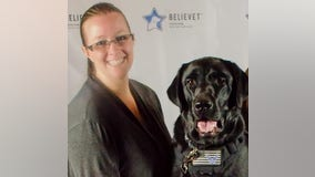 Minnesota reaches settlement with company that refused to allow employee to bring service animal to work