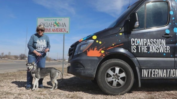 After airline policy change, California couple drives rescue dogs cross country to Minnesota shelter
