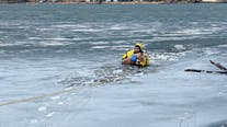Maintenance worker rescues dog that fell through ice on New Brighton lake