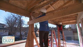 Local women raise a hammer for Habitat for Humanity's Women Build Week