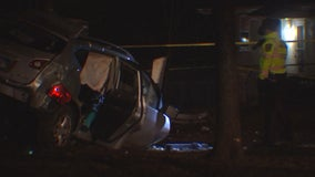 Woman killed after vehicle hits tree along Olson Memorial Highway in Minneapolis