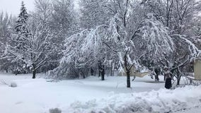 Snow Totals: Less than 1 inch in Twin Cities, nearly 5 in northern Minnesota
