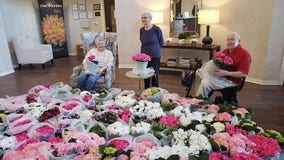 Galleria donates 4,000 flowers to elderly after Floral Experience cancelled