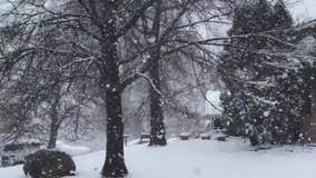 Big snowflakes fall on Easter Sunday in Minnesota