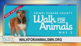 #Still Walking: Animal Humane Society's Walk for Animals going virtual