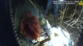 Officials rescue entangled bald eagles in Greenfield, Minnesota