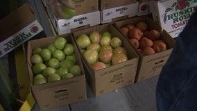 Florida vegetables an unexpected victim of coronavirus