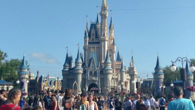 wtvt disney magic kingdom cinderella castle 2